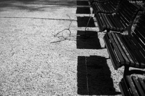 Геометрия города. Фотопроект